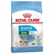 Royal Canin Mini Starter mother y babydog