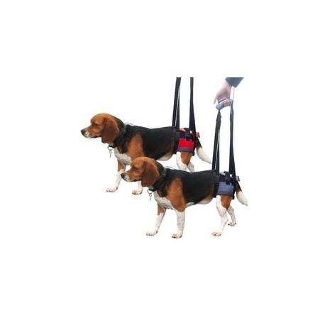 Arnés trasero de movilidad Handy Canis