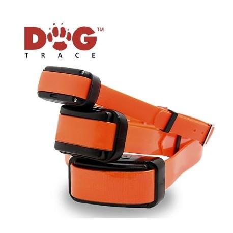 Collares educativos adicionales para Dogtrace Pro