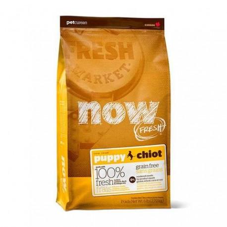 Pienso Now Fresh Grain Free Puppy