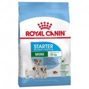 Royal Canin Mini Starter mother y babydog