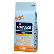 Advance Maxi Adult
