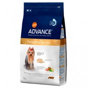 Advance Yorkshire terrier pienso perro