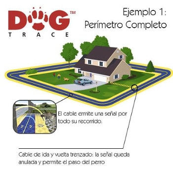 Ejemplo 1 Dogtrace D-fence
