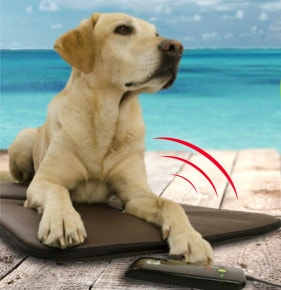 colchon relajante para perros epad friends